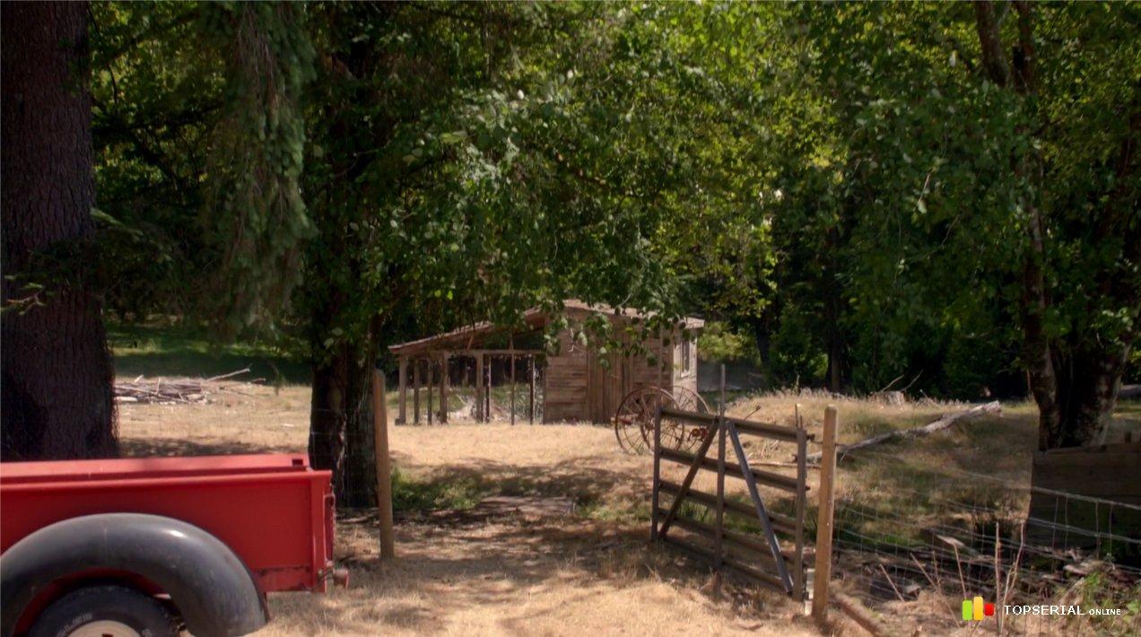 Скачать фильм сотня 2 сезон 1-16 серию через prakard.